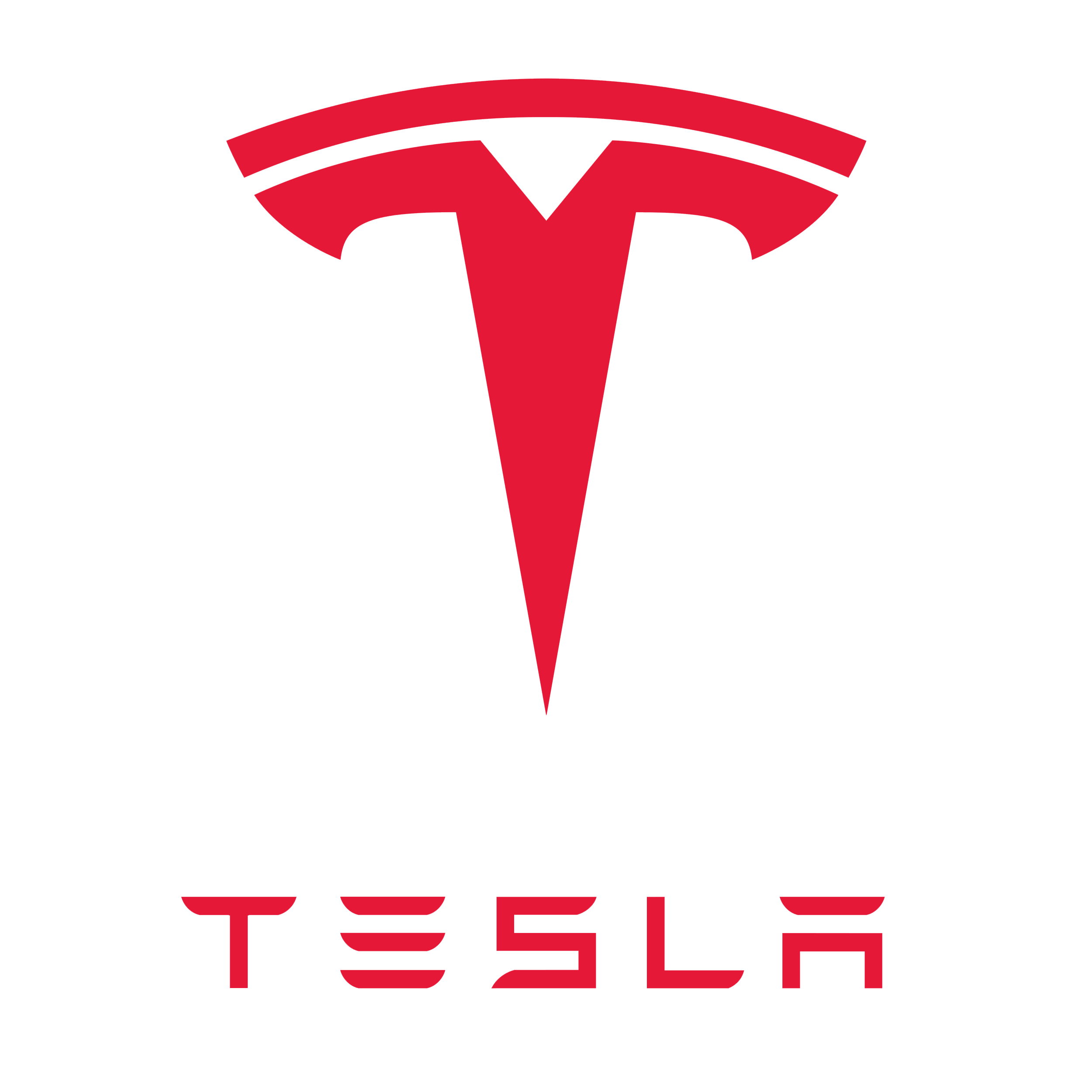 Kundenlogo Tesla